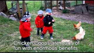 Chicken-coop-ideas.wmv