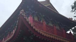 Hong Kong Trip Day Three Lantau Island