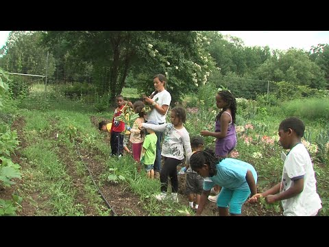 Organic Gardening for Children