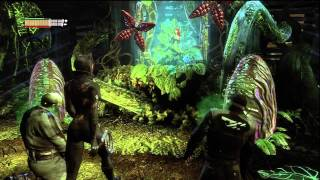 Batman: Arkham City - Catwoman talks to Poison Ivy (After Beating Game)