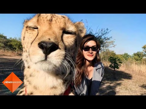 Kriti Sanon Receives Backlash As She Poses For A Selfie With Cheetah | SpotboyE Mp3
