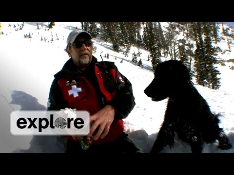Avalanche Search and Rescue - Grover Cleveland