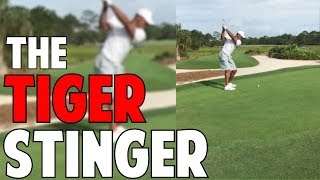 How to Hit The Tiger Stinger in Crazy Detail