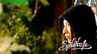 音楽 スフィークル http://ameblo.jp/sphehicle/ 監督 脚本 撮影 変集 ...