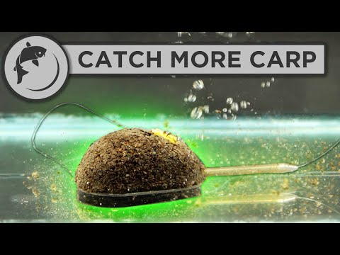 How To Fish The Method Feeder - 5 Steps To Catch More Fish
