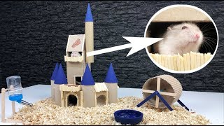 This Hamster lives in a better House than Me