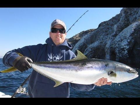 Fly Fishing Near Newport Beach Ca