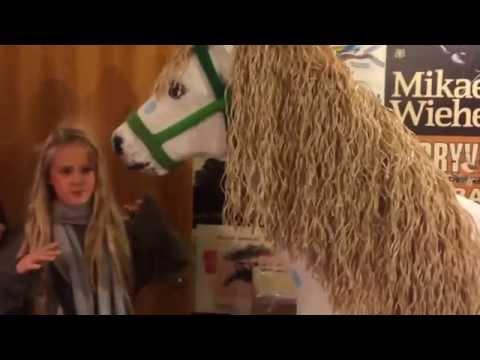 Teatergruppen KLIMA - Pippi i Baghuset