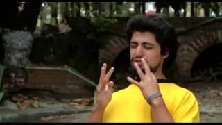 Puro Mula Cocaina Anfetamina Heroina By Alphaent