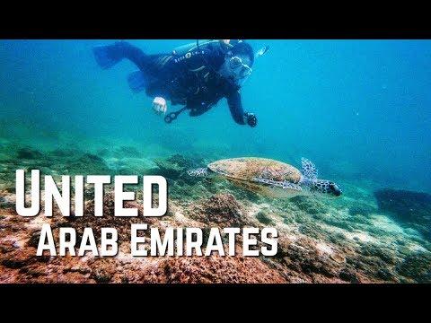 Scuba Diving in Fujairah - UAE | FIRST FUN DIVE