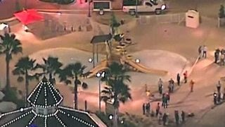 Во Флориде умертвили аллигатора-убийцу