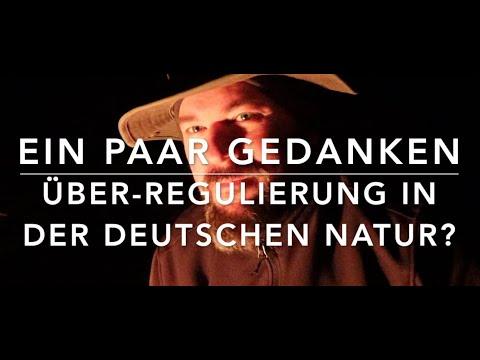 Gedanken zur Überregulierung im Wald
