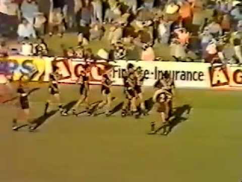 1981 Western Suburbs Magpies