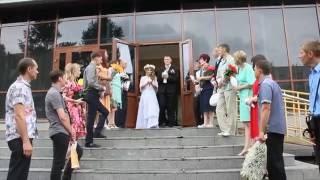 В Омске одновременно поженились 3 молодые пары под русско-народные песни и танцы