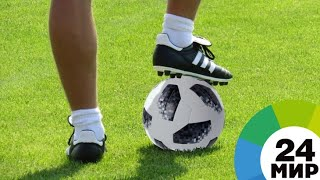 Смотреть видео Большой футбол: Санкт-Петербург готовится к Евро-2018 - МИР 24 онлайн