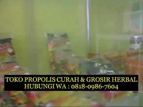 apotik-yg-jual-propolis-wa-081809867604