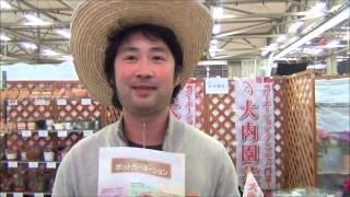 茨城県常陸太田市の二代目生産者。大学ではクレマチスを研究。就農後は...
