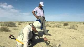 Удивительная находка на высохшем дне Аральского моря(Смотрите это короткое видео, в нём доказательства одной из версий того, что до моря на месте Арала уже была..., 2014-12-12T18:19:13.000Z)