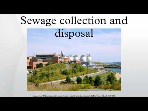 Sewage collection and disposal