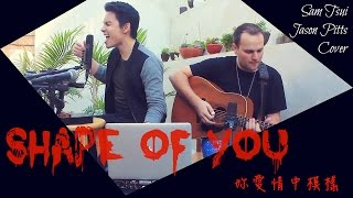 ► Shape of You - Sam Tsui Looping Cover ft. Jason Pitts with Lyrics 中文翻譯
