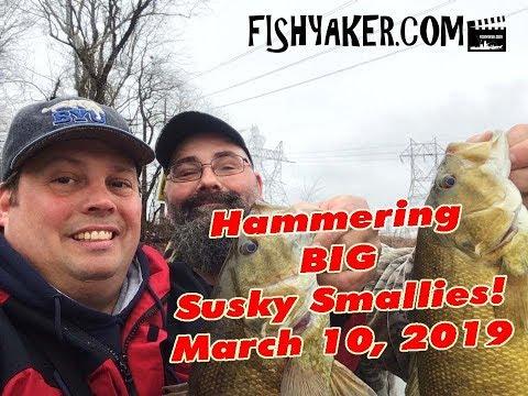 Hammering Late Winter Susquehanna River Smallmouth Bass: 3/10/19