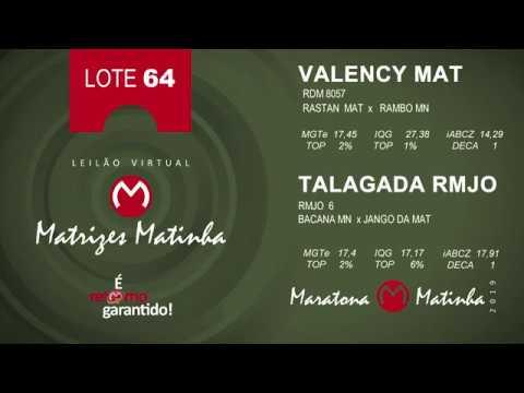 LOTE 64 Matrizes Matinha 2019