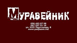PSDJteam at Muraveynik 8 11 2014