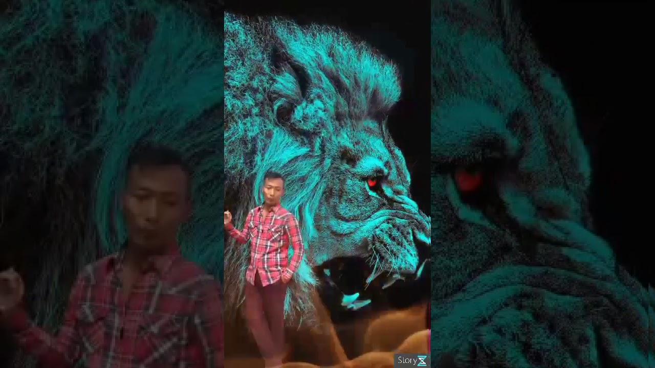 Porbo Video
