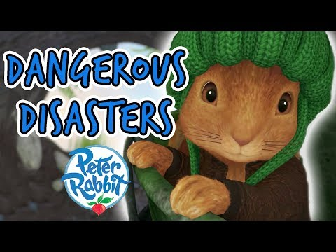 Peter Rabbit - Tales of Dangerous Disasters Compilation | 40+ minutes | Adventures with Peter Rabbit