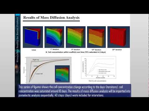ABAQUS tutorial | Bone Healing Analysis using Mechano-Regulation Theory