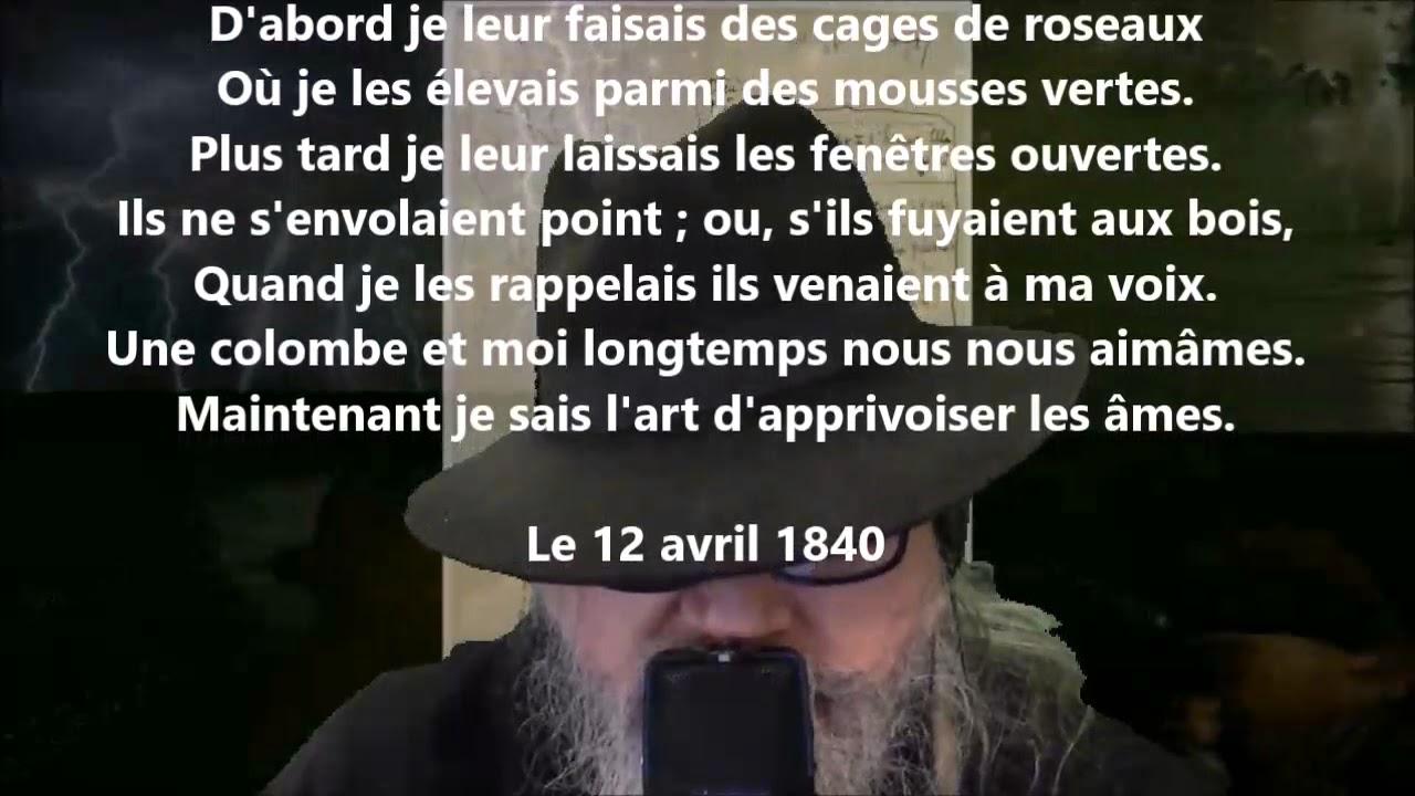 Jeus Toujours De Lamour Pour Les Choses Ailées Victor