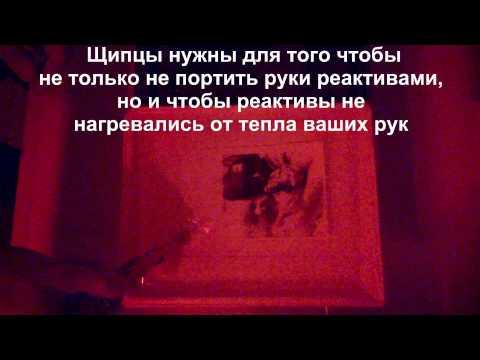 Семья Дианы Шурыгиной сбежала из Комсомолки