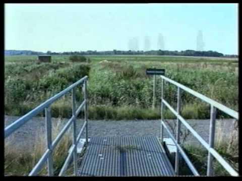 Expo 2000 - Projekt Lahstedt-Gadenstedt