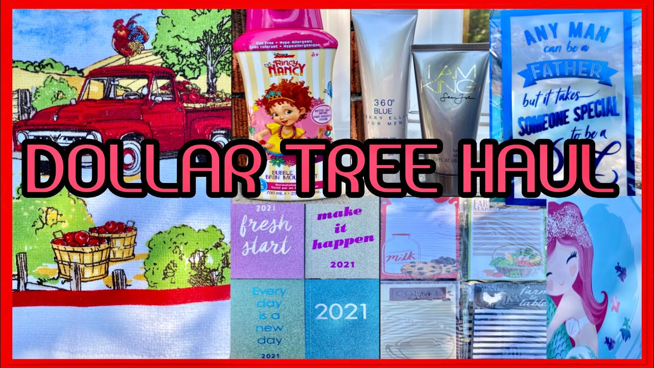 DOLLAR TREE HAUL | OMG WOW INCREDIBLE NEVER SEEN BEFORE ITEMS | MUST SEE | JUNE 17 2020