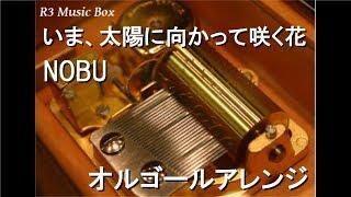 NOBU - いま、太陽に向かって咲く花 -Remix-