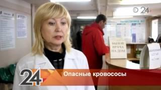 В Нижнекамске женщине после укуса клеща отказались делать прививку от смертельной болезни