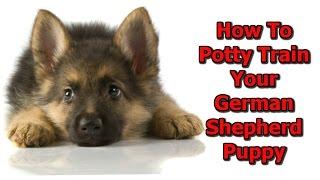 +++ How To Potty Train My German Shepherd Puppy ♥ START TODAY ♥ German Shepherd Potty Training Tips