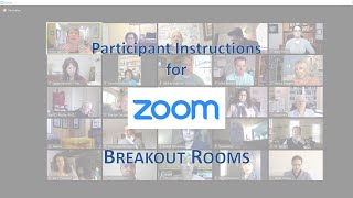 Zoom Breakout Rooms - instructions for participants