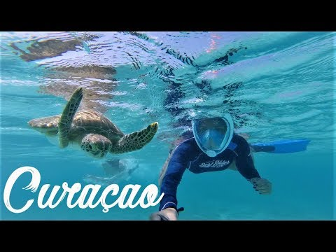 Trip to Curacao 2018