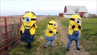 Homemade Despicable Me minion costumes