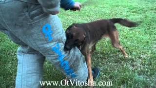 Odin Ot Vitosha thumbnail