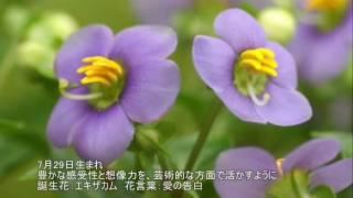 参照サイト:恒星占星術365日誕生日占い http://365uranai.net/ 365...