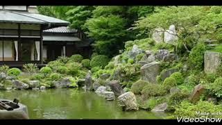 チェリッシュ - なのにあなたは京都へゆくの