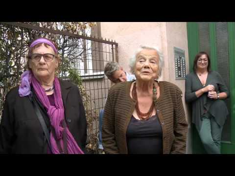 The Return of Karl Polanyi to Vienna