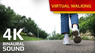 Virtual Walk for indoor Cats (Flower Park in Asia) 4K 60FPS HQ Sound