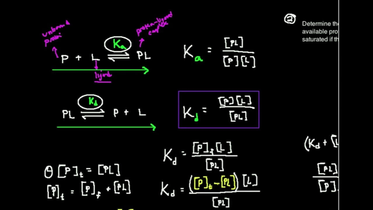 Kd The Dissociation Constant What Is It Youtube