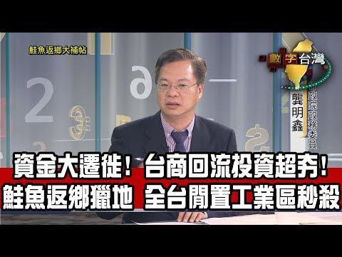 數字台灣HD268鮭魚返鄉大補帖 謝金河 龔明鑫