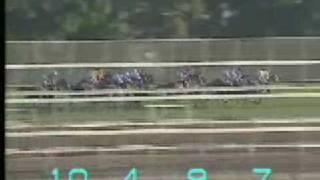 【海外競馬】'95香港国際カップ Hong Kong International Cup Fujiyama Kenzan