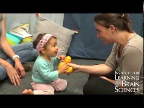 Babies' brains show that social skills linked to second language learning