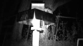 "Another FAIL with the ""Raccoon-Proof"" Feral Cat Feeder"